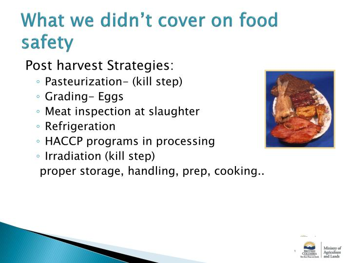 What we didn't cover on food safety