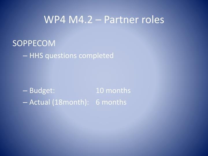 WP4 M4.2 – Partner roles