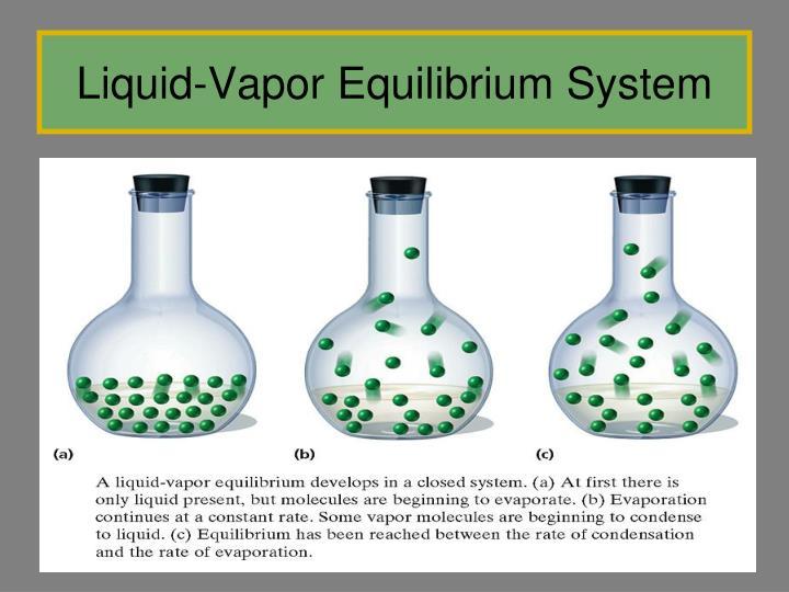 Liquid-Vapor Equilibrium System