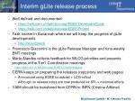 interim glite release process1