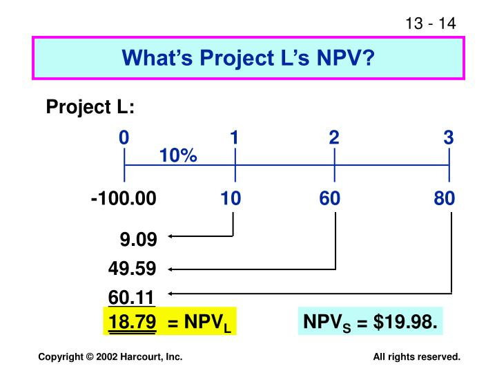 What's Project L's NPV?