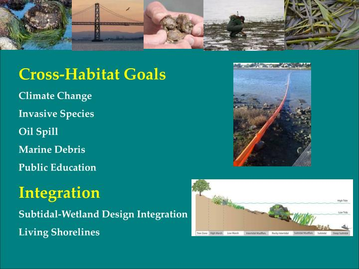 Cross-Habitat Goals