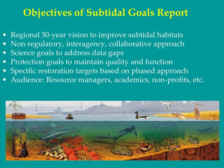 Objectives of Subtidal Goals Report