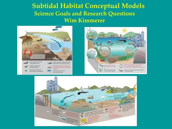 Subtidal Habitat Conceptual Models