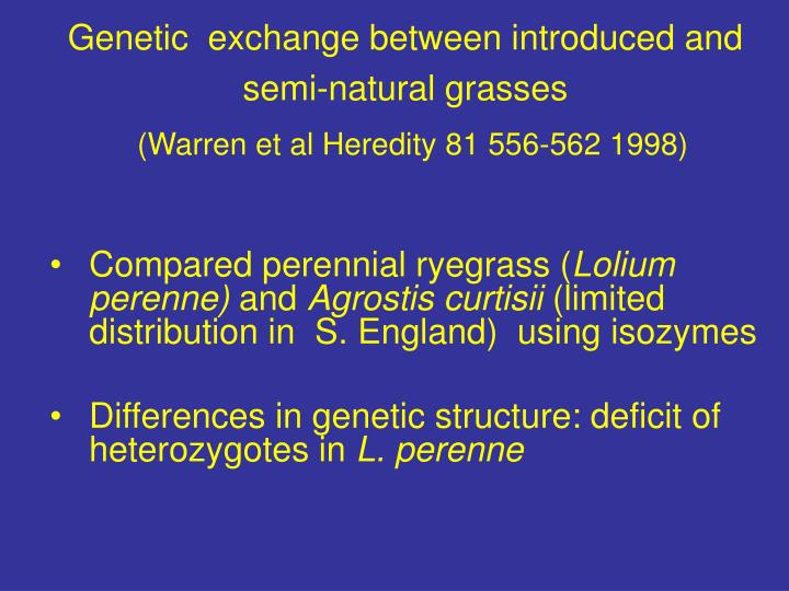 Genetic  exchange between introduced and semi-natural grasses