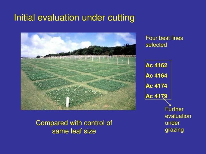 Initial evaluation under cutting