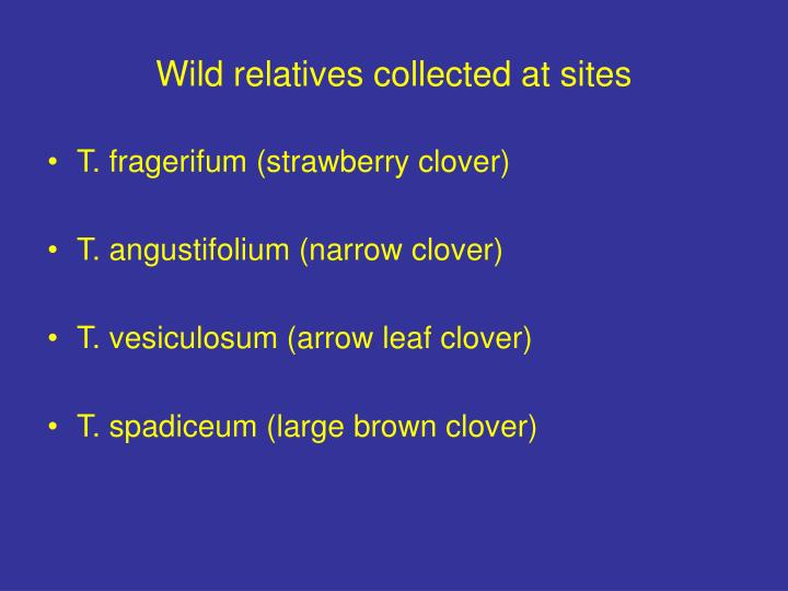 Wild relatives collected at sites