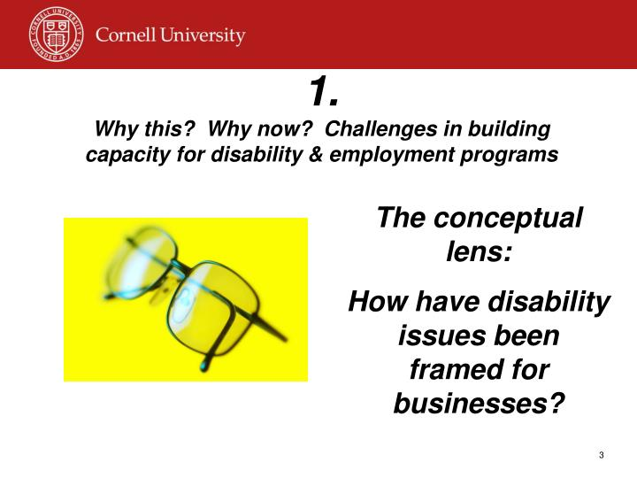 1 why this why now challenges in building capacity for disability employment programs
