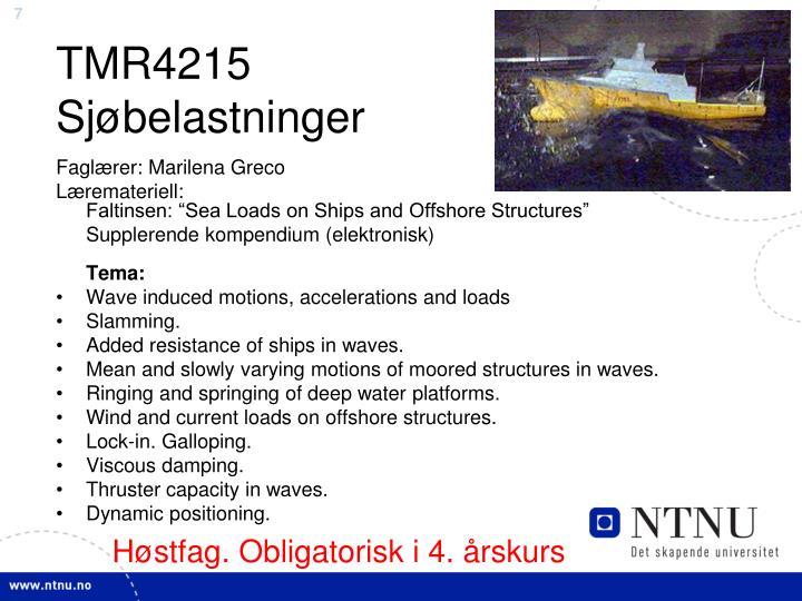 TMR4215 Sjøbelastninger
