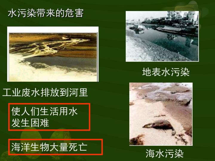 水污染带来的危害