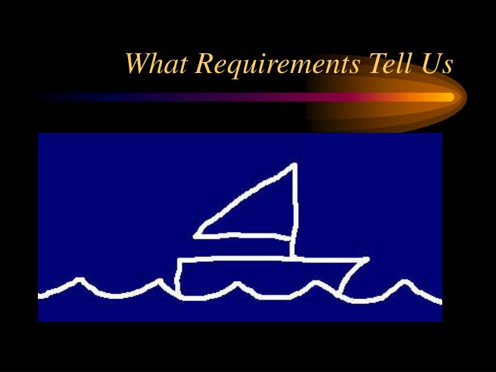 What Requirements Tell Us