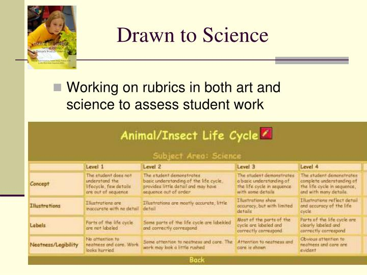 Drawn to Science