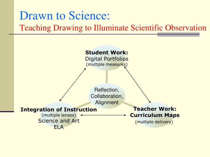 Drawn to Science: