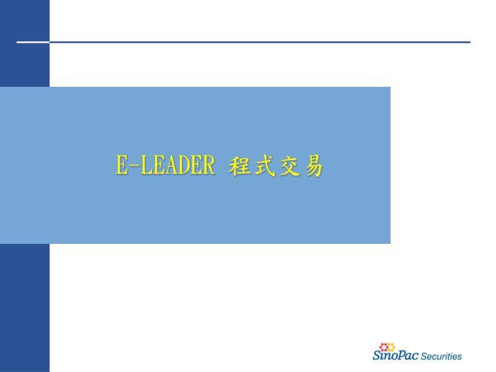 E-LEADER