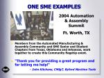 one sme examples1