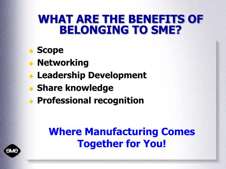 WHAT ARE THE BENEFITS OF BELONGING TO SME?