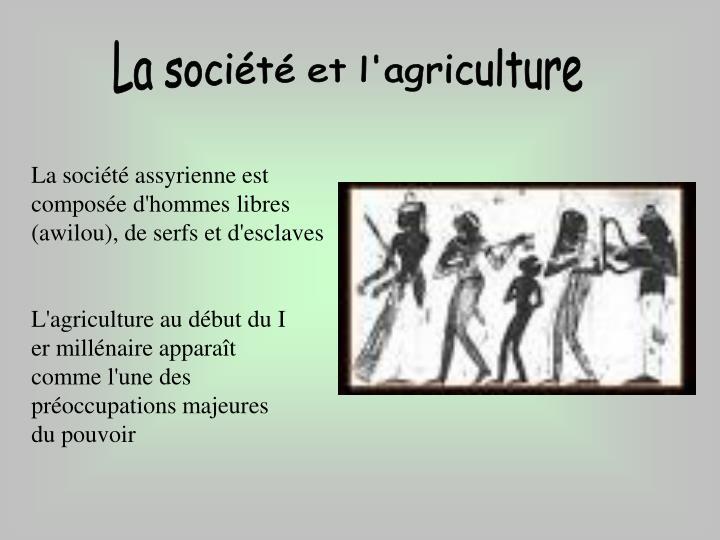 La société et l'agriculture