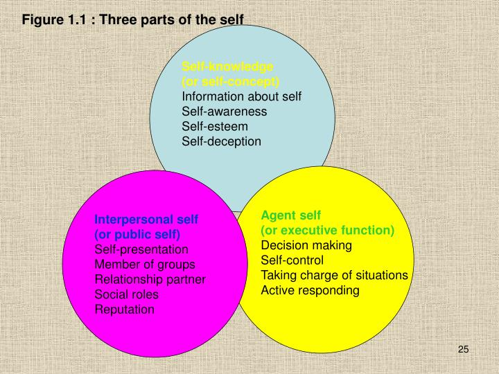 Figure 1.1 : Three parts of the self