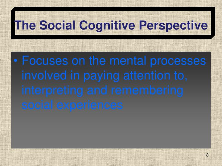 The Social Cognitive Perspective