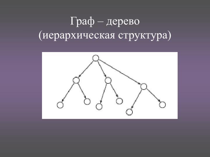Граф – дерево