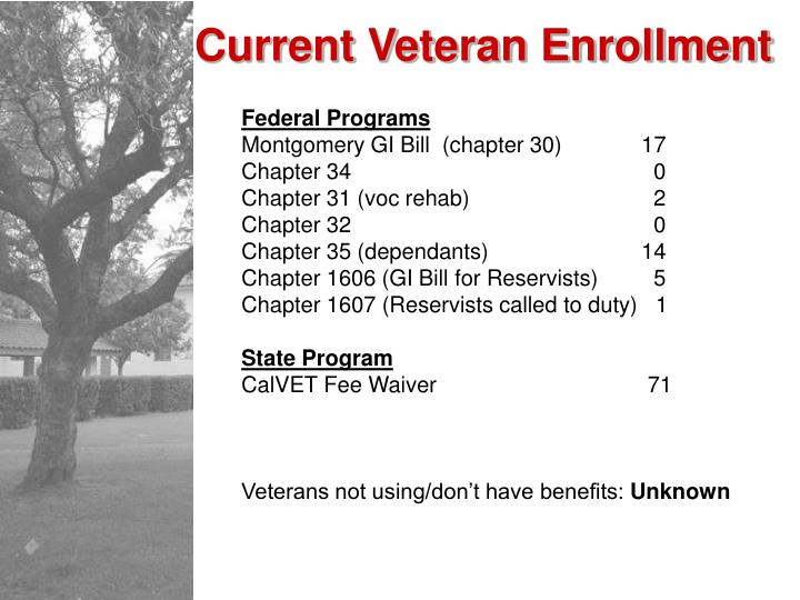 Current Veteran Enrollment