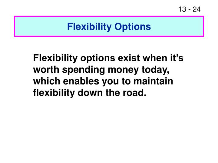Flexibility Options