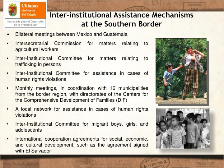 Inter-institutional Assistance Mechanisms at the Southern Border