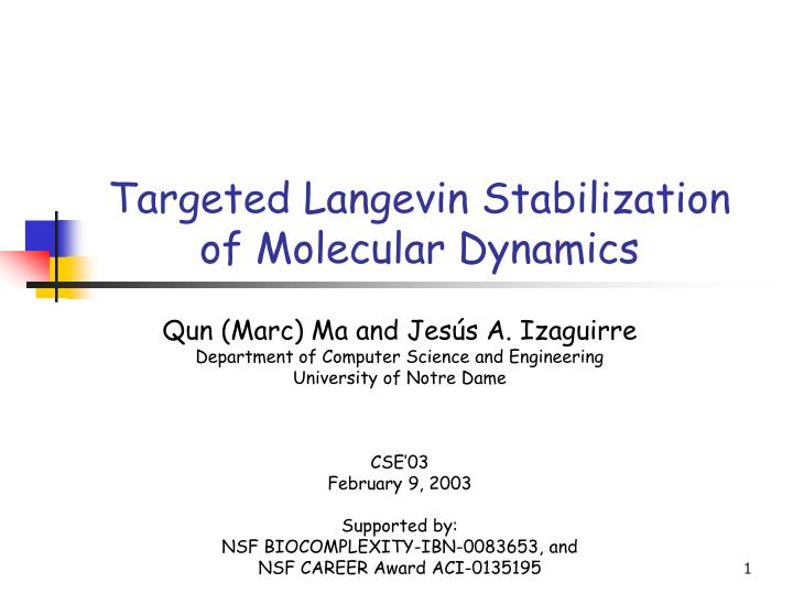 Targeted langevin stabilization of molecular dynamics