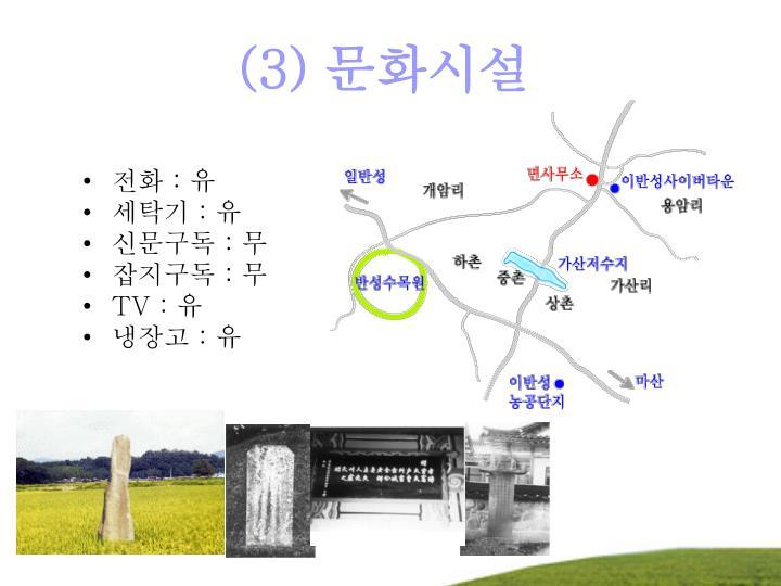 (3) 문화시설