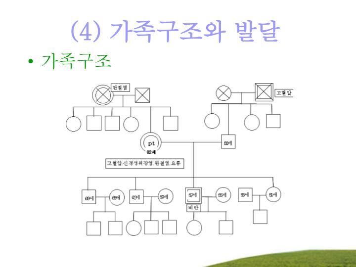 (4) 가족구조와 발달
