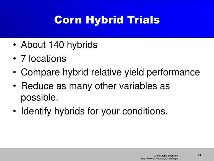 Corn Hybrid Trials