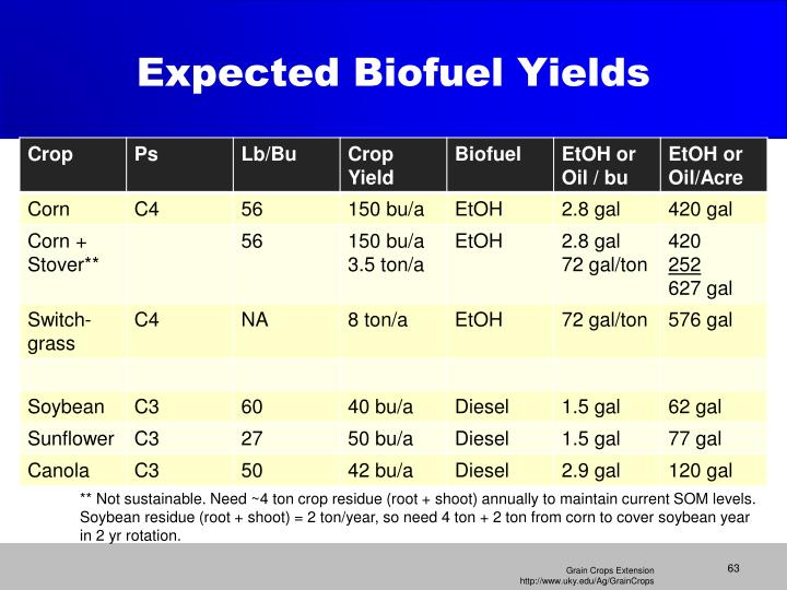 Expected Biofuel Yields