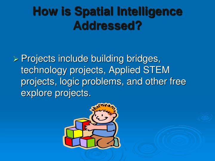 How is Spatial Intelligence Addressed?