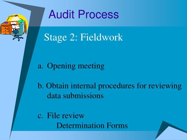 Audit Process