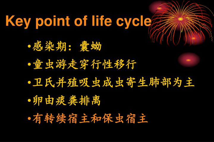 Key point of life cycle