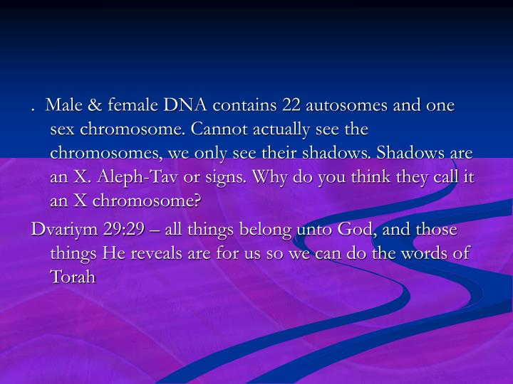 .  Male & female DNA contains 22 autosomes and one sex chromosome. Cannot actually see the chromosomes, we only see their shadows. Shadows are an X. Aleph-Tav or signs. Why do you think they call it an X chromosome?