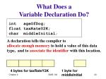 what does a variable declaration do