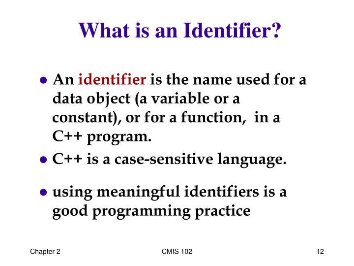 What is an Identifier?