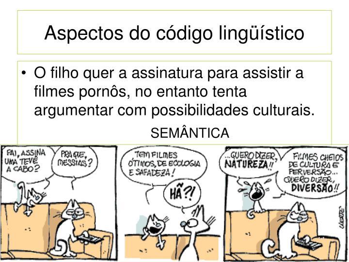 Aspectos do código lingüístico