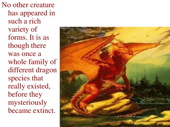 No other creature has appeared in such a rich variety of forms. It is as though there was once a whole family of different dragon species that really existed, before they mysteriously became extinct.