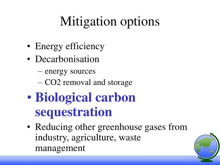 Mitigation options