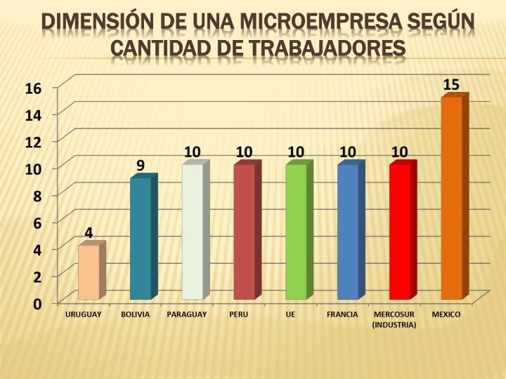 DIMENSIÓN DE UNA MICROEMPRESA SEGÚN CANTIDAD DE TRABAJADORES