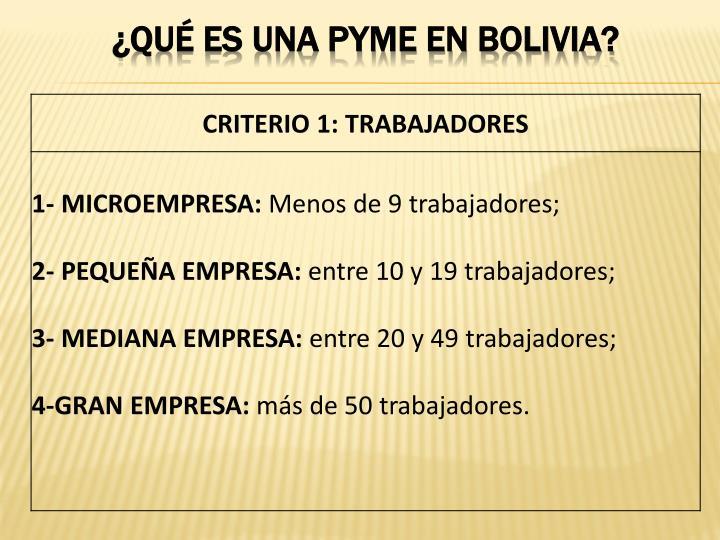 ¿qué es una pyme EN BOLIVIA?