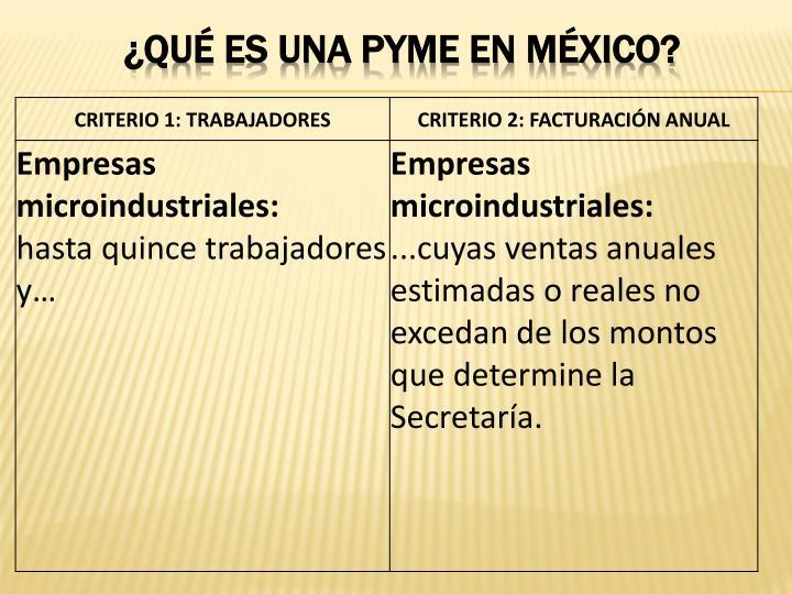 ¿QUÉ ES UNA PYME EN MÉXICO?