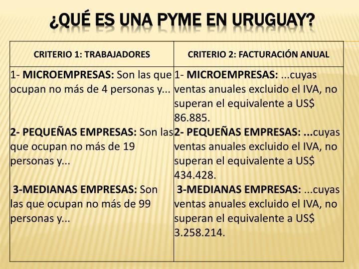¿QUÉ ES UNA PYME EN URUGUAY?