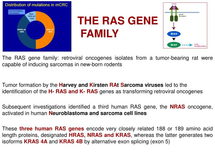 THE RAS GENE