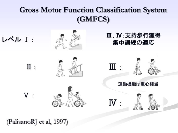 Gross Motor Function Classification System