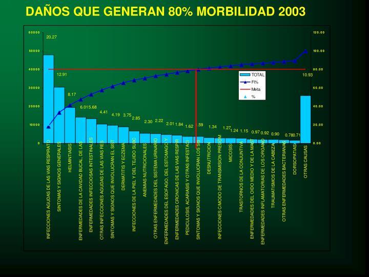 DAÑOS QUE GENERAN 80% MORBILIDAD 2003