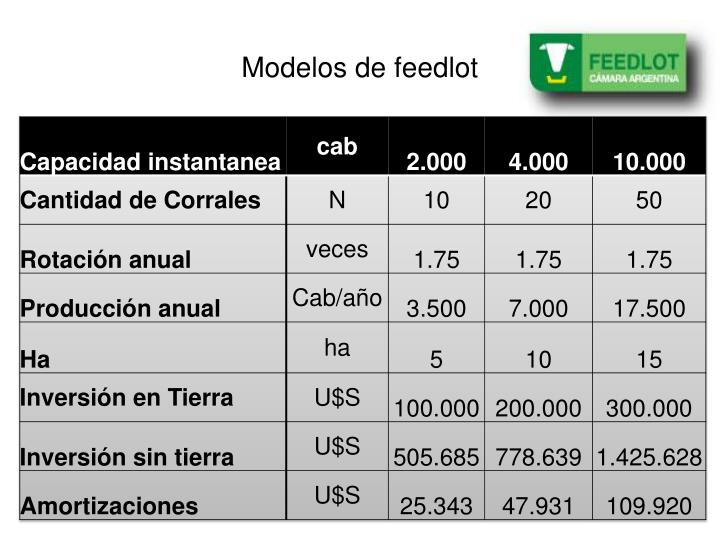 Modelos de feedlot
