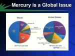 mercury is a global issue1